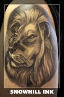Lion by toe-art