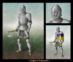 Knight of Vasterond by Milesian27