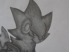 Family- Luxray close up by sazmullium