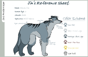Jin's Reference Sheet by koisnake