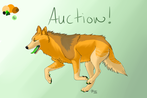 Wolf Auction(Open) by DjCronIX