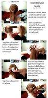 Inverted Ponytail Tutorial by Ginger-Biscuit-Stock