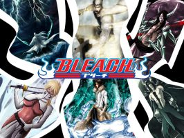 Bleach - Montage 003 by T-Metalskull