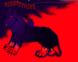 Nightstrike Reference Sheet by silver-moonwolf
