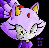 .:Blaze The Cat:. by FabienneTheHedgehog