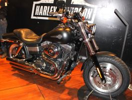 Harley Fat Bob by New-Dawn-Productions