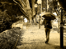 One Sepia Umbrella by Mekkor2