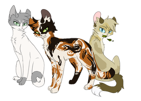 ShadowClan Ranks by Bluefire-kitteh