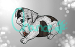Sketchy Pet Portrait~Buster by Aussielover101