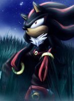 Shadow - draw again by Yochanan-dreamer