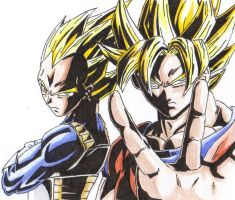 Goku and Vegeta by dtwothaniel