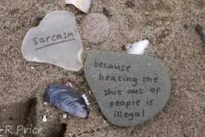 Why We Have Sarcasm by Rhiallom
