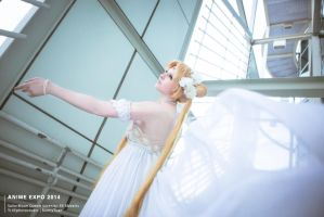 Salior Moon Queen Serenity by BunnyTuan