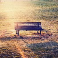 .: bench :. by all17