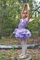 The Sugar Plum Fairy of the Forest by Claudillama