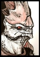 Urdnot Wrex - Watercolor and Ink by Fyerfly