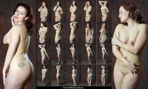 Stock: Nicole 20 Classic and Expressive Nudes by ArtReferenceSource