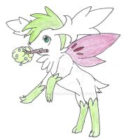 Shaymin ~ huskygirl24 by 5iveAM