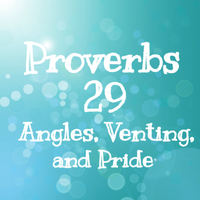 Proverbs 29 Angles, Venting, and Pride by 1234RoseSmith