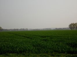 Northerngermany outback by Ardgy