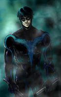 NIGHTWING... by Bikette68