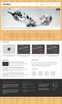 Inspired Wordpress Theme by imaxds