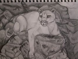 Mountain Lion by Adriellovesart