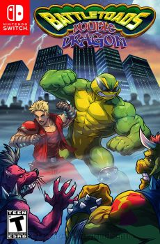 BattleToads/Double Dragon Switch by FooRay