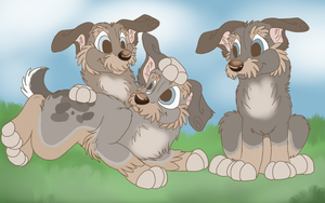 Puppies by September-Colors