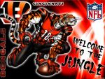 Bengals cincinnati Wallpaper by Exmoor288