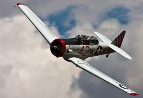T-6 Texan by mikesplanes