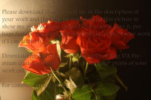 Roses at night stock by PzychoStock