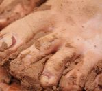 http://th01.deviantart.net/fs70/150/i/2011/339/c/1/muddy_toes_by_wire_man-d4iawrr.jpg