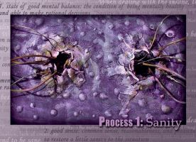 Process 1: Sanity by lioness7s