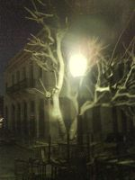 lamppost by phoebeplupp