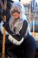 Black Cat by melissa-andrade