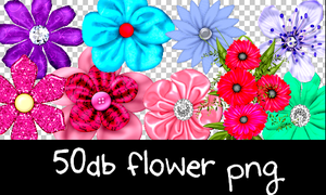 Flower png pack by ginnycullen