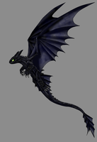 HTTYD-Night Fury by Scatha-the-Worm