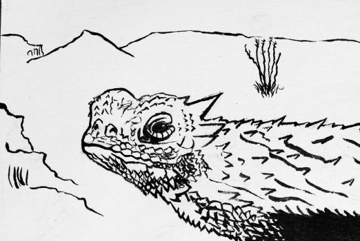 Horned Lizard wip by JeffreyMcClure