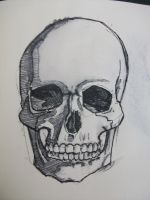 Sketchbook 8 - because everyone loves skulls ... by pencilpirates