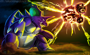 Nidoking vs Weezing by Twarda8