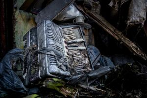 Very Old Accordion by BorrowedCamera