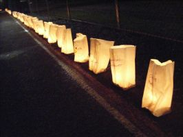 Luminaria Bags by Seattle-Storm