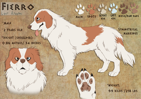 Fierro- Reference sheet by Nothofagus-obliqua