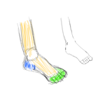 Quick feet practice by DrawingPlayful