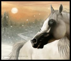 Le Prince de l'Hiver by XxRed-ButterflyxX