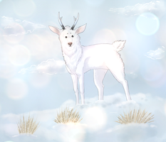 White deer by WindaWolf