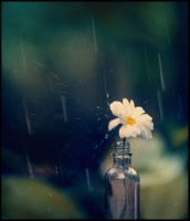 like a sad song.. by TOYIB