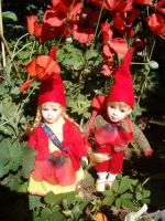Little poppy gnomes 1 by JanuaryGuest