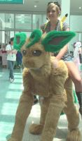 Leafeon and a pokemon trainer from Pokemon by trivto